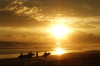 surfing-trip