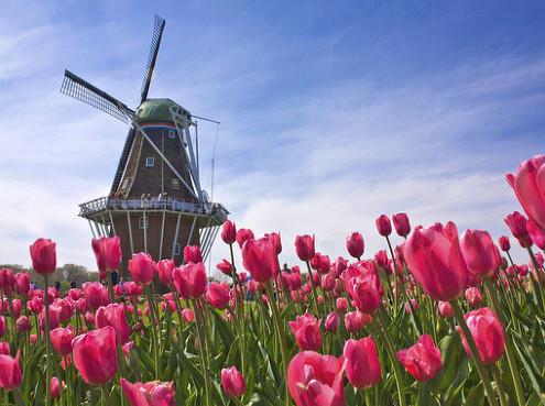 네덜란드 풍차